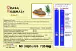 Buy Chaga Rosemary blend 400mg gel or veggie caps