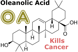 Oleanolic Acid Kills Cancer